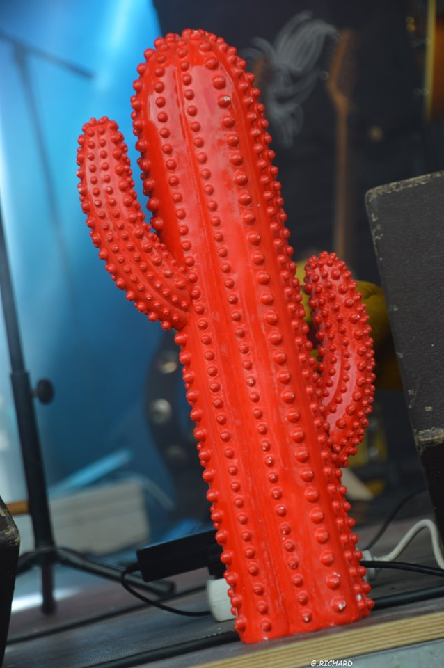 Red Cactus 15-cactus