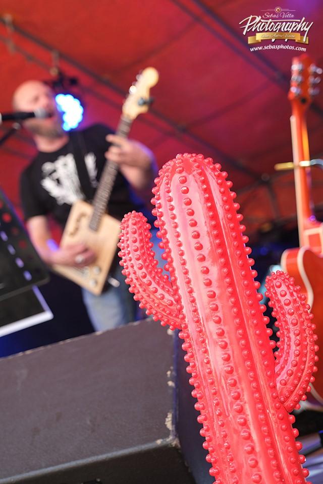 redcactus 5